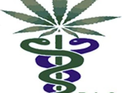 Comunicato di Pazienti Impazienti Cannabis (P.I.C.) e L.I.L.A. Toscana sulla terapia con Cannabis in Toscana